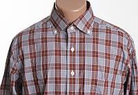 CAFE COTON  рубашка д/р размер M ПОГ 58 см б/у , фото 1