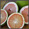 Ароматизатор Xi'an Taima Pomelo fruit