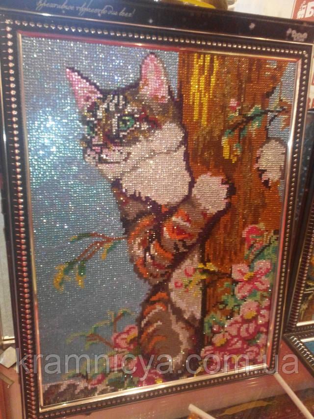 Алмазная мозаика DIAMOND MOSAIC Котик