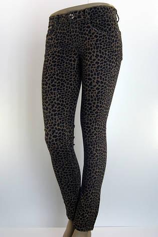 """Джинси жіночі з принтом ,, леопард"""", фото 2"""