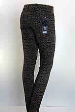 """Джинси жіночі з принтом ,, леопард"""", фото 3"""