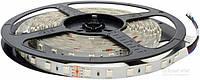 Лента светодиодная  Светкомплект 14.4 Вт IP22 24 В 5 м разноцветный