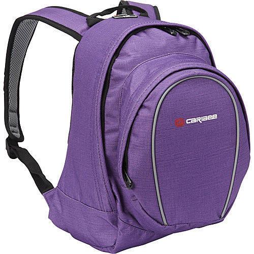 Рюкзак молодежный 20 л. Caribee Spice 20 фиолетовый