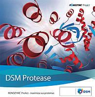 Фермент Ронозим ProAct (CT) (протеаза 75 000), 200 г/т