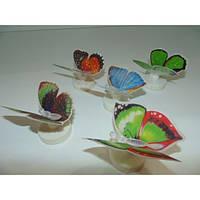 Светящаяся бабочка на липучке