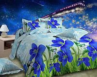 Постельное белье евро и двухспальное Синие цветы