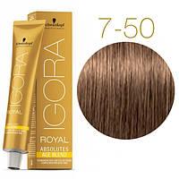 Igora Royal Absolutes - Крем краска для волос 7-50 Средне-русый золотистый натуральный, 60 мл