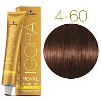 Igora Royal Absolutes - Крем краска для волос 4-60 Средне-коричневый шоколадный натуральный, 60 мл