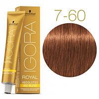 Igora Royal Absolutes - Крем краска для волос 7-60 Средне-русый шоколадный натуральный, 60 мл