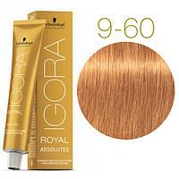 Igora Royal Absolutes - Крем краска для волос 9-60 Экстра светлый блондин шоколадный натуральный, 60 мл
