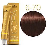 Igora Royal Absolutes - Крем краска для волос 6-70 Темно-русый медный натуральный, 60 мл