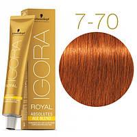 Igora Royal Absolutes - Крем краска для волос 7-70 Средне-русый медный натуральный, 60 мл