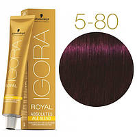 Igora Royal Absolutes - Крем краска для волос 5-80 Светло-коричневый красный натуральный, 60 мл
