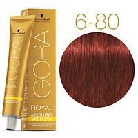 Igora Royal Absolutes - Крем краска для волос 6-80 Темно-русый красный натуральный, 60 мл