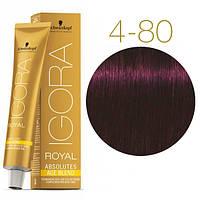 Igora Royal Absolutes - Крем краска для волос 4-80 Средне-коричневый красный натуральный, 60 мл