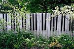 Как украсить старый забор ? (интересные статьи)