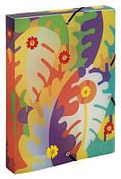 Папка-бокс пластиковая на резинках Pop'Art EXACOMPTA 59121E