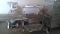 Фритюр  автоматический для пончиков Riehle Wendeelelektronik FHWE 93