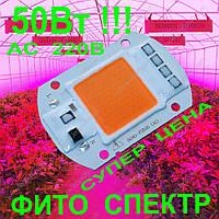 220В 50Вт COB фито светодиод для растений