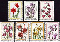 Венгрия 1985 - цветы, лилии - MNH XF