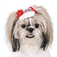 Кепка Pet Fashion Льняная для собак, фото 1