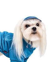 Кепка Pet Fashion Летняя для собак S