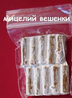 Мицелий грибов вешенки  на палочках (170 шт)