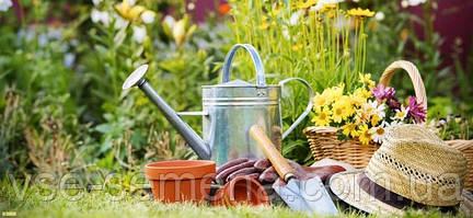 Календарный план ухода за садом