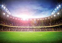 Фотообои Ночной стадион 366*254