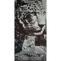 Махровое полотенце ТМ Речицкий текстиль (Белоруссия), Инстинкт, 81х160 см