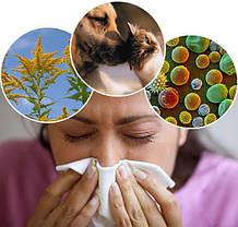 Препараты для лечения и профилактики аллергии