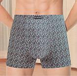Трусы (боксеры) мужские Incont Indena - 70грн. Упаковка 2шт - p.XL, фото 2