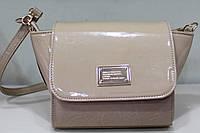 Женский клатч модные сумки Новинка 17-596-3