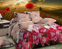 Постельное белье евро и двухспальное Цветение Яблони