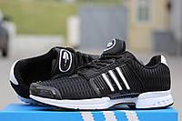 Черно-белые кроссовки Adidas Climacool, мужские