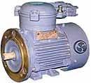 Взрывозащищенные электродвигатели 4ВР 63 - 160