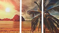 Картина модульная 3 части Пальма возле моря МК099