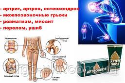 АРТРОХВОЯ (артро хвоя) крем бальзам Арго остеохондроз, артрит, артроз, ревматизм, миозит, бронхит
