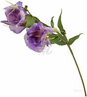 Растение декоративное Лизиантус 4113 LILAC