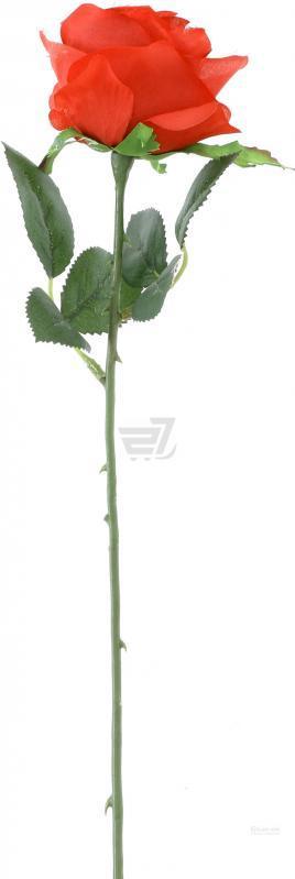 Растение декоративное Роза Simone 45 см - Bighause в Киеве