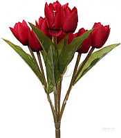 Растение декоративное Тюльпаны 51166381