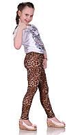 Лосины детские леопард лето