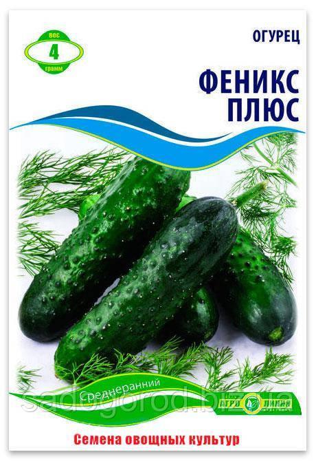 Семена Огурца, Феникс Плюс, 4 г.