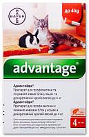 Адвантейдж (Advantage) 40 капли на холку от блох для котят и кошек до 4 кг, 1* 0,4 мл, Bayer (Байер)