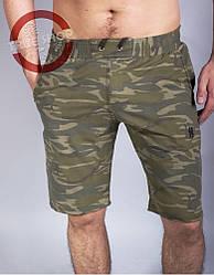 Мужские трикотажные шорты Barbarian