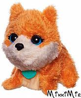 Щенок - интерактивная игрушка, Поющие зверята, Furreal Friends, Hasbro, щенок, Оранжевый