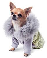 """Толстовка Pet Fashion """"Тиффани"""" для собак, S"""