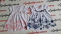 Платье для девочки  F&D р. 1-5 лет. Купить детские платья оптом.