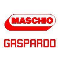 Пара коническая G16621250 Gaspardo