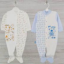 Человечек для новорожденного р.80-2шт. средний Хлопок-Интерлок,1402инкс.5-8 мес, В наличии 68,74 Рост, фото 2